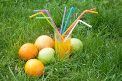 Durée toujours 1 Jus frais en fruits proches en verre dans l'herbe verte Photographie stock libre de droits