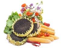 Durée toujours. Légumes photos stock