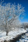 Durée toujours - l'hiver Images stock