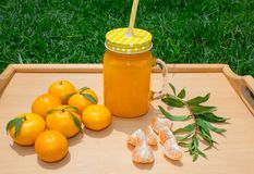 Durée toujours 1 Une tasse transparente avec une poignée avec du jus fraîchement serré de mandarine Et mandarines fraîches outdoo photo stock