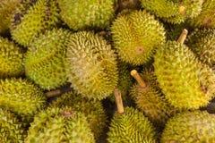 Dur-ian thailändska frukter Royaltyfri Bild