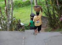 Dur labeur des femmes dans Bali Image libre de droits