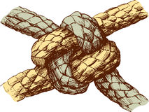 Durable knot. Vector drawing of a durable knot Stock Photos