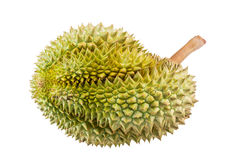 Durain fruit isolated from Thailand Stock Image