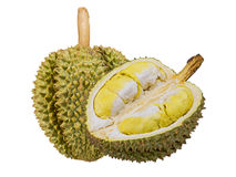 Durain fruit from Thailand Stock Photography