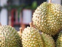 Durain, roi de fruit, sur le marché, la Thaïlande Photographie stock libre de droits
