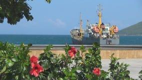 Durante las ondas despliegue una nave grande se ancla el arbusto con las flores rojas grandes se sacude en el viento metrajes
