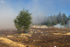 Durante o fogo na operação de descarga dos resíduos sólidos Foto de Stock Royalty Free