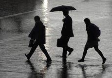 Durante uma chuva Imagem de Stock
