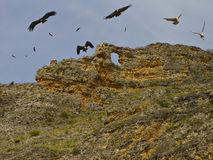 durat gorges река Испания n стоковые фотографии rf