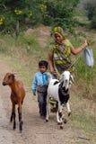 Durata rurale dell'India Immagine Stock Libera da Diritti