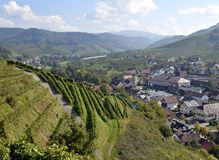 Durbach vineyards. View past the vineyards towards the town of Durbach, Ortenau region in Baden Germany Royalty Free Stock Images