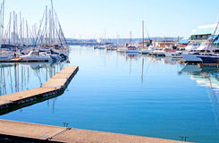 Durban South Africa Yachts Moored at Yacht Club Stock Photography
