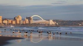 Durban Suráfrica imágenes de archivo libres de regalías