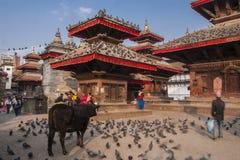 durbar kathmandu fyrkant Royaltyfri Bild