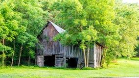 Durch Bäume versteckt eine Moonshinerskabine in Alabama lizenzfreie stockbilder