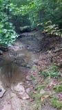 Durch The Creek und Spur lizenzfreie stockfotografie