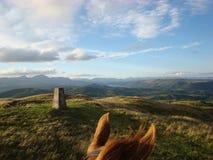 Durch das Pferdeohr-Reiten in Cumbria Stockbild