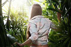 Durch den Dschungel lizenzfreie stockbilder