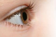 Durch die Augen eines Kindes Stockfotografie