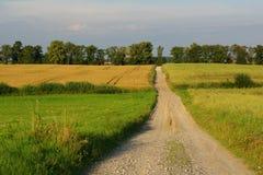 Durch die Felder Lizenzfreie Stockfotos