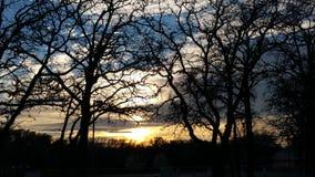 Durch gesehen den Bäumen Lizenzfreie Stockfotografie