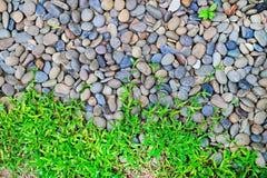 Durch Granit entsteint Flusssteine, die das grüne Gras einfach wächst Kraft des Naturkonzeptes FO Lizenzfreie Stockbilder