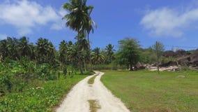Durch Palmen auf exotischer Insel gehen, La Digue, Seychellen 4 stock video footage