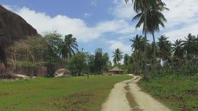 Durch Palmen auf exotischer Insel gehen, La Digue, Seychellen stock video