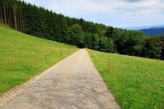 Durch schöne Landschaft nahe dem Berg Schauinsland im Schwarzwald wandern, Deutschland Lizenzfreies Stockfoto