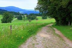 Durch schöne Landschaft nahe dem Berg Schauinsland im Schwarzwald wandern, Deutschland Stockfoto