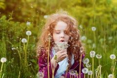 Durchbrennenlöwenzahn des kleinen Mädchens Hintergrund, der instagram filte tont Lizenzfreies Stockbild