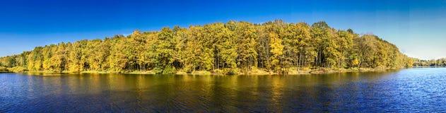 Durchdachte Herbstoberfläche Wunderbarer Fall stockfoto