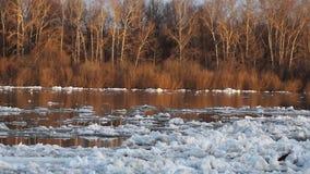 durcheinander Eisgang auf Fluss Eis schwimmt Frühling oder frühen Winter stock footage