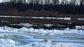 durcheinander Eisgang auf Fluss Eis schwimmt Frühling oder frühen Winter stock video