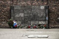 Durchführungs-Wandkonzentrationslager Auschwitz Birkenau KZ Polen 2 des Blockes 10 Stockfotografie
