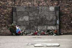Durchführungs-Wandkonzentrationslager Auschwitz Birkenau KZ Polen des Blockes 10 Stockfotografie