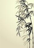 Durchgehen eines Bambusses Stockfotos
