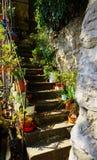 Durchtränken Sie Außentreppenhaus mit Blumentöpfen auf beiden Seiten lizenzfreie stockfotos