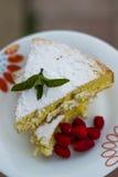 Durcissez, épongez avec la fraise et la menthe de vert arrosées avec Photographie stock libre de droits