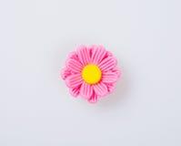 durcissez la décoration ou durcissez la fleur de décoration sur un fond Photo stock