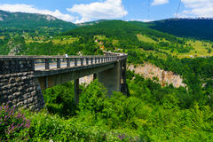 Durdevica塔拉桥梁 免版税库存图片