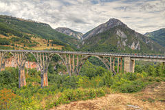 Durdevica arched Tara Bridge,. Durdevica arched Tara Bridge over green Tara Canyon. One of the world deepest Canyons and UNESCO World Heritage, Montenegro Royalty Free Stock Photos