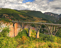 Durdevica arched Tara Bridge, Montenegro. Durdevica arched Tara Bridge over green Tara Canyon. One of the world deepest Canyons and UNESCO World Heritage Stock Photo