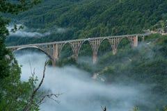 Durdevica bro över den Tara kanjonen Arkivfoto