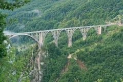 Durdevica bro över den Tara kanjonen Arkivbild