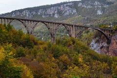 Durdevica Tara arc bridge in the autumn mountains, Montenegro. Stock Image