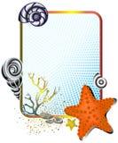 Durée de mer dans la trame avec des étoiles de mer Photographie stock