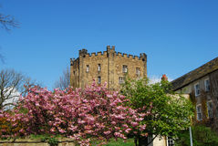 Durham Castle Keep Royalty Free Stock Photography