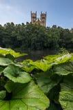 Durham Cathedral -England UK Stock Photo